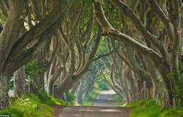 Ngắm bối cảnh đẹp mê hồn của phim truyền hình ăn khách Game of Thrones