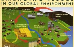 Thế giới cần sự phát triển bền vững trong tiêu thụ và sản xuất