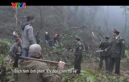Khi đàn chim trở về 3: Phim chính luận mới trên VTV