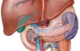 Bệnh gan nhiễm mỡ và những lưu ý cần thiết