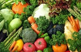 Chú trọng dinh dưỡng ngày Tết