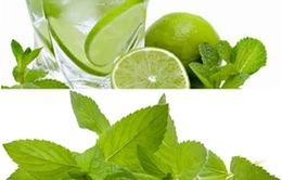 Lợi ích cho sức khỏe từ lá bạc hà