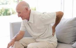 Lưu ý chế độ dinh dưỡng cho người đau xương, khớp