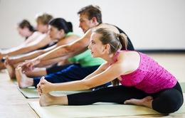 Giới công sở nghỉ trưa bằng... Yoga
