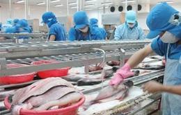 Ngành cá tra Việt Nam có Hiệp hội