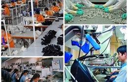 Gia nhập WTO, thế và lực của Việt Nam được nâng cao