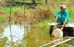 200.000 dân tại Cà Mau thiếu nước sạch