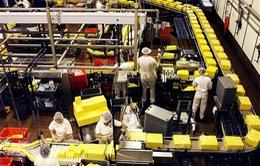 2 triệu người Mỹ thất nghiệp vì công nghệ cao