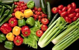 Những thực phẩm dinh dưỡng giúp giảm stress