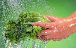 Tránh nhiễm khuẩn từ nhà bếp