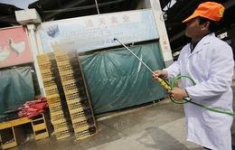 Trung Quốc: 38 người nhiễm H7N9, 10 người đã tử vong