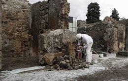 Di sản thế giới Pompeii cần được bảo vệ đặc biệt