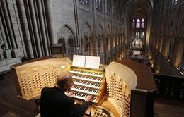 Tân trang đại phong cầm tại Nhà thờ Đức Bà Paris