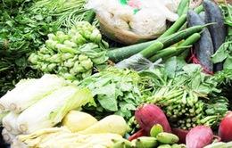 Người dân loay hoay tìm thực phẩm sạch