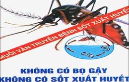 ASEAN chung tay phòng chống sốt xuất huyết