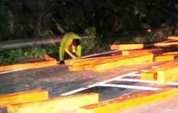 Khánh Hòa: Lâm tặc ngoan cố chống người thi hành công vụ