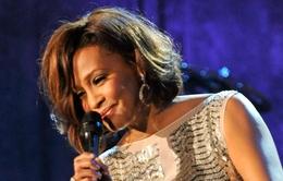 Whitney Houston được vinh danh bằng truyện tranh