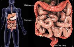 7 cách giảm nguy cơ ung thư ruột
