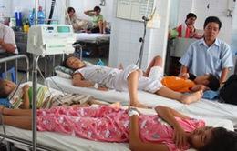 Đà Nẵng tăng đột biến sốt xuất huyết và các bệnh đường hô hấp