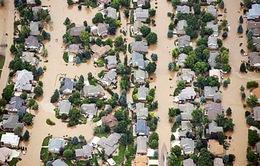 Mỹ: Lũ lụt nghiêm trọng ở bang Colorado