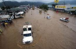 Bão lớn ở Mexico: ít nhất 23 người thiệt mạng