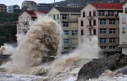 Bão Fitow đổ bộ, 40 vạn dân Trung Quốc sơ tán khẩn cấp
