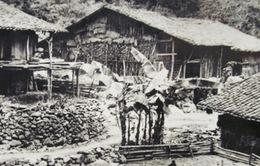 """Triển lãm """"Chủ tịch Hồ Chí Minh và các nhà cách mạng tại Long Châu"""""""
