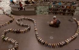 Domino dài nhất thế giới với 5.000 cuốn sách