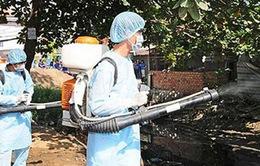 Quảng Nam: Sốt xuất huyết có nguy cơ bùng phát cao sau lũ