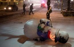 Mỹ: Bão tuyết khiến 13 người thiệt mạng