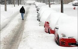 """Bão tuyết hoành hành khiến nhiều bang nước Mỹ """"tê liệt"""""""