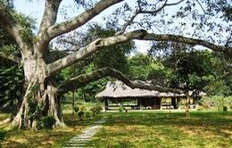 Quy hoạch di tích Tân Trào gắn với phát triển du lịch