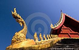 Hình tượng rắn trong tâm thức và tín ngưỡng của người Lào