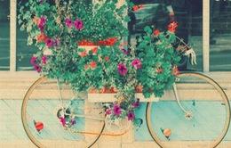 10 ý tưởng sáng tạo cho chiếc xe đạp cũ