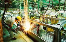 Sửa đổi Điều 170 Luật DN để gỡ khó cho doanh nghiệp FDI