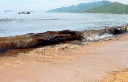 Bài học từ vụ tràn dầu biển Quy Nhơn