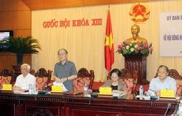 Hội đồng Hiến pháp trong Dự thảo sửa đổi Hiến pháp năm 1992