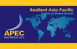 APEC nỗ lực đạt mục tiêu Bogor, tăng cường kết nối