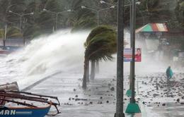 Philippines hoang tàn sau bão Haiyan