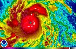 Uỷ ban Quốc gia Tìm kiếm cứu nạn trực bão Haiyan 24/24