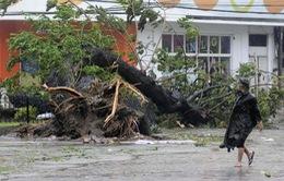 Bộ Quốc phòng quyết tâm tập trung toàn lực chống bão Haiyan