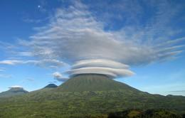 Virungas - Vùng đất của lửa và băng