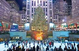 Cây thông biểu tượng Noel của New York sáng đèn