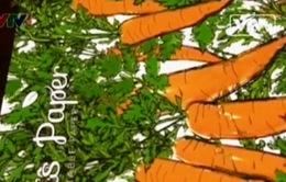 Giấy bọc quà tái chế cấy hạt giống cây trồng