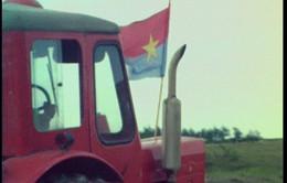 Nông thôn Quảng Trị năm 1973