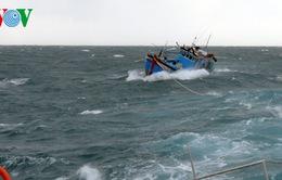 Cứu nạn tàu cá và 11 ngư dân ở Khánh Hoà