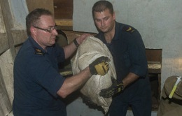 Canada: Thu giữ hơn 500 kg Heroine