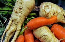 Bồ Đào Nha: Dự án chống lãng phí 1 triệu tấn thực phẩm mỗi năm