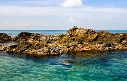 Những lý do bạn nên đến Puerto Rico