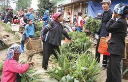 Chợ cỏ - Phiên chợ đặc biệt ở vùng cao Lào Cai